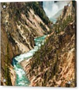 Yellowstone Waterfalls Acrylic Print