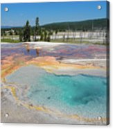 Yellowstone's Firehole Acrylic Print