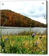 Yellowwood Lake, Southern Indiana Acrylic Print