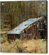 Yesteryear Shed 2 Acrylic Print by Dale Stillman