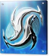 Yin And Yang Whale Acrylic Print