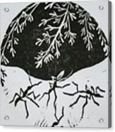 Yin Yang Acrylic Print by Pati Hays