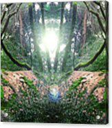 Yo Moss Acrylic Print