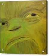 Yoda Selfie Acrylic Print