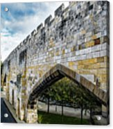 York City Roman Walls Acrylic Print