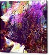 Yorkshire Puppy Domestic Animal  Acrylic Print
