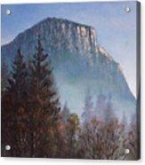 Yosemite Dawn Detail Acrylic Print