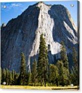 Yosemite Meadow 2 Acrylic Print