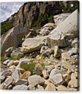 Yosemite Rockslide Acrylic Print