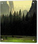 Yosemite Valley Golden . Vertical Acrylic Print