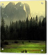 Yosemite Village Golden Acrylic Print