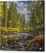 Yosemites N Park Acrylic Print