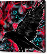 You Can Crow Your Own Way Acrylic Print