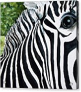 You Can Run But You Can't Hide Acrylic Print
