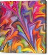 You Got Color Acrylic Print