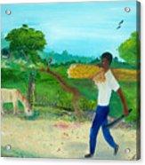 Young Man Carrying Sugarcane Acrylic Print