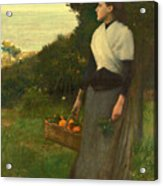 Young Woman In A Garden Of Oranges Acrylic Print