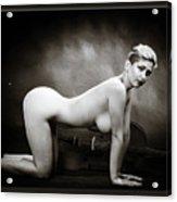 Young Woman Nude 1729.568 Acrylic Print