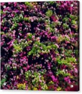 Your Spring Bed Acrylic Print