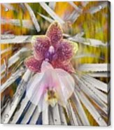 Yucca Dreaming Of Orchids Acrylic Print