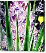 Yucca Flower Plant Southwestern Art Acrylic Print