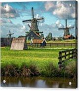 Zaanse Schans And Farm Acrylic Print
