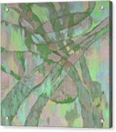 Zardoz 1. Acrylic Print