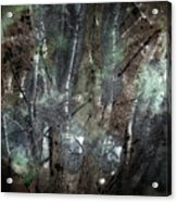 Zauberwald Vollmondnacht Magic Forest Night Of The Full Moon Acrylic Print by Mimulux patricia no
