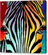 Zebra - End Of The Rainbow Acrylic Print by Alicia VanNoy Call