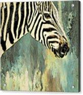 Zebra Abstracts Too Acrylic Print