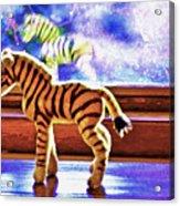 Zebra Dreaming Acrylic Print
