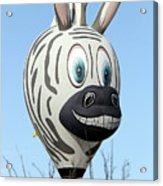 Zebra Hot Air Balloon At Balloon Fiesta Acrylic Print