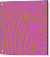 Zebra Shmebra Acrylic Print