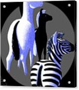 Zebredee Acrylic Print