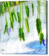 Zen Reflection Acrylic Print