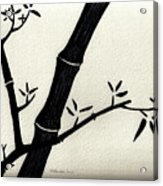 Zen Sumi Antique Bamboo 2a Black Ink On Fine Art Watercolor Paper By Ricardos Acrylic Print