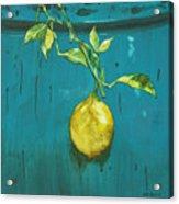 Zest II Acrylic Print