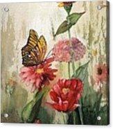 Zinnias And Monarch Acrylic Print