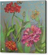 Zinnias With Bee Acrylic Print