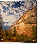 Zion Afternoon Acrylic Print