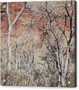 Zion At Kayenta Trail Acrylic Print