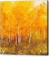 Zion Autumn Acrylic Print