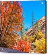 Zion Autumn Colors Acrylic Print