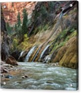 Zion Canyon Acrylic Print