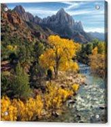 Zion Fall Foliage Acrylic Print