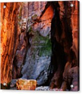 Zion Narrows With Boulder Acrylic Print
