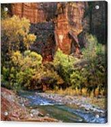 Zion National Park 57 Acrylic Print