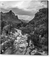 Zion National Park In Black And White  Acrylic Print