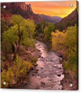 Zion National Park The Watchman Acrylic Print