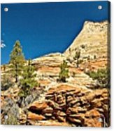 Zion National Park Vista Acrylic Print